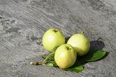 Wild apples — Stock Photo
