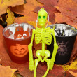 Halloween lantern and a skeleton — Stock Photo