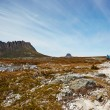 Stock Photo: Windswept hikers on desolate Overland Trail, Tasmania