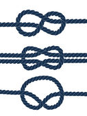 Nautical blue knots on white background, vector — Stock Vector