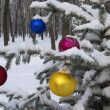 Foto de Stock  : Christmas decorations hanging on Christmas tree in forest.