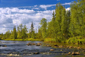 Polisarka river. Kola Peninsula. — Stock Photo