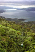 Tropical Rain Forest Canopy Tram — Stock Photo