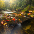 Fall Colors on Appalachian River — Stock Photo