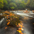 Beautiful Chattooga River in Autumn — Stock Photo