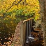 Quiet Mountain Lake in Autumn — Stock Photo
