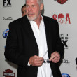 Ron Perlman — Stock Photo #12872496