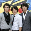 Постер, плакат: The Jonas Brothers