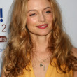 Stock Photo: Heather Graham