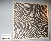 Fingerprint Art — Stock Photo