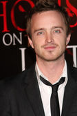 Aaron Paul — Stock Photo