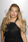 Taylor Dayne — Stock Photo