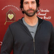 David Schwimmer — Stock Photo