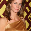 Rachel Griffiths — Foto Stock