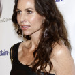 Stock Photo: Minnie Driver