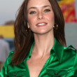 Annie Wersching — Stock Photo