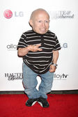 Verne Troyer — Stock Photo