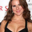 Kate Del Castillo - Stock Photo