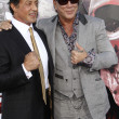Sylvester Stallone, Mickey Rourke — Stock Photo #12958244