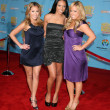Cheetah Girls: Adrienne Bailon, Kiely Williams, Sabrina Bryan — Stock Photo #12958620
