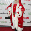 SantClaus — Stock Photo #12961010