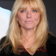 Cheryl Tiegs — Stock Photo