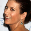 Kate Walsh - Stockfoto