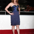 Alicia Witt - Stock Photo
