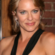Arianne Zucker - Stock Photo