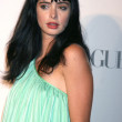 Stock Photo: Krysten Ritter