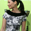 Lucy Liu — Stock Photo #12972301
