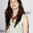 Michelle Monaghan — Stock Photo #12976340