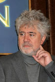 Pedro Almodovar — Stock Photo