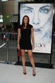 Amanda Righetti — Foto de Stock