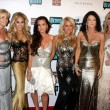 Постер, плакат: Camille Grammer Adrienne Maloof Kyle Richards Kim RIchards Lisa Vanderpump Adrienne Maloof