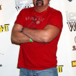 Kane Hodder - Stock Photo