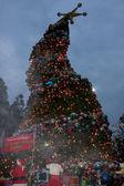 GRINCHmas Crooked Christmas Tree — Stock Photo