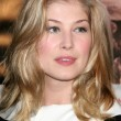 Stock Photo: Rosamund Pike
