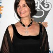 Sela Ward — Stock Photo #12997208