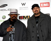 Cypress Hill — Stock Photo