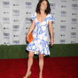 Robin Tunney - Stock Photo