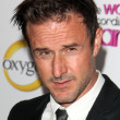 David Arquette — Stock Photo