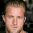 Stock Photo: Scott Caan