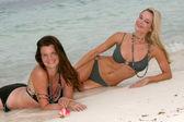 Heather Tom and Jennifer Gareis — Stock Photo