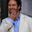 Rob Morrow — Stock Photo #13022537