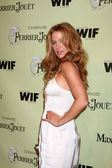 Poppy Montgomery — Stock Photo