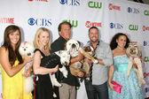 Greatest American Dog Contestants — Stock Photo