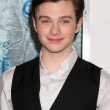 Chris Colfer — Stock Photo #13030671