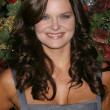 EXCLUSIVE Heather Tom — Stock Photo