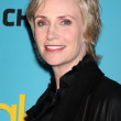 Stock Photo: Jane Lynch